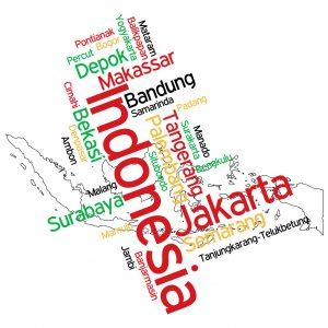 印度尼西亚素行调查
