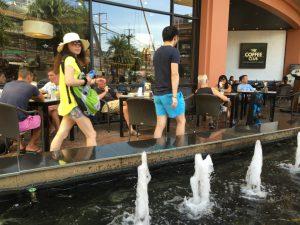 在泰国的中国人素行调查